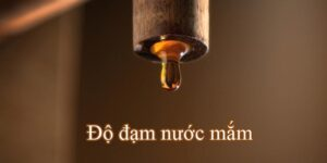 nuoc-mam-nhi-2